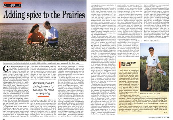 Article Preview: Adding spice to the Prairies, September 1993 | Maclean's