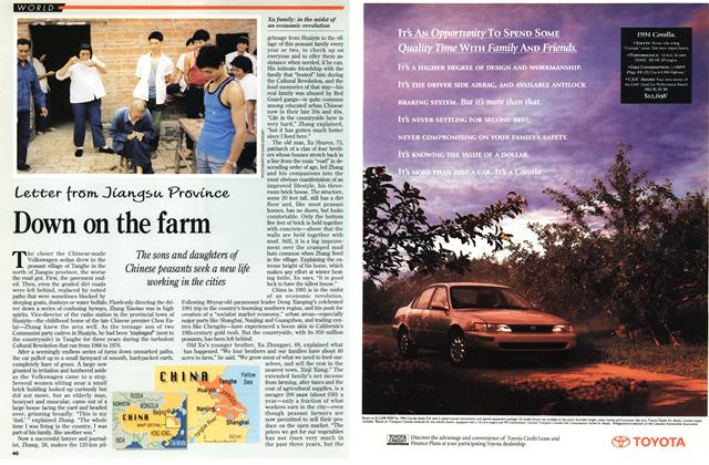 Article Preview: Down on the farm, October 1993 | Maclean's