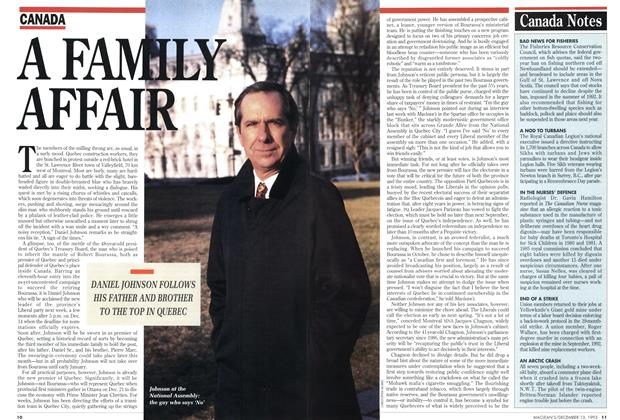 Article Preview: A FAMILY AFFAIR, December 1993 | Maclean's