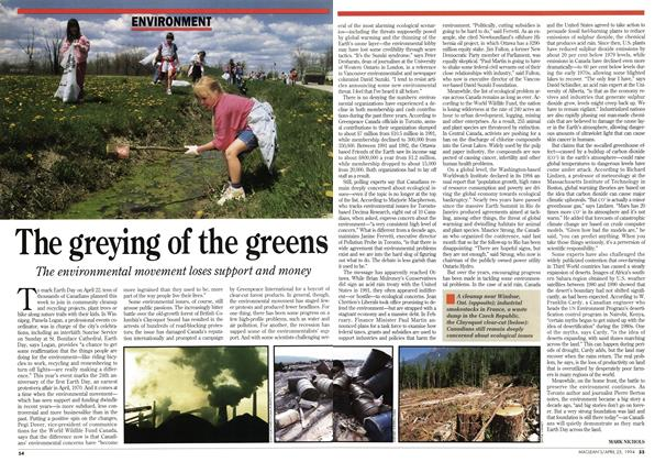 Article Preview: The greying of the greens, April 1994 | Maclean's