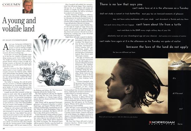 Article Preview: A young and volatile land, July 1994   Maclean's