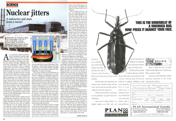 Article Preview: Nuclear jitters, December 1994 | Maclean's