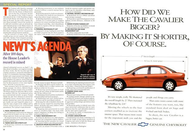 Article Preview: NEWT'S AGENDA, April 1995 | Maclean's