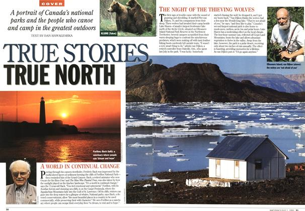 Article Preview: TRUE STORIES, TRUE NORTH, July 1995 | Maclean's