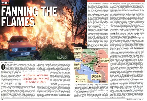Article Preview: FANNING THE FLAMES, August 1995 | Maclean's
