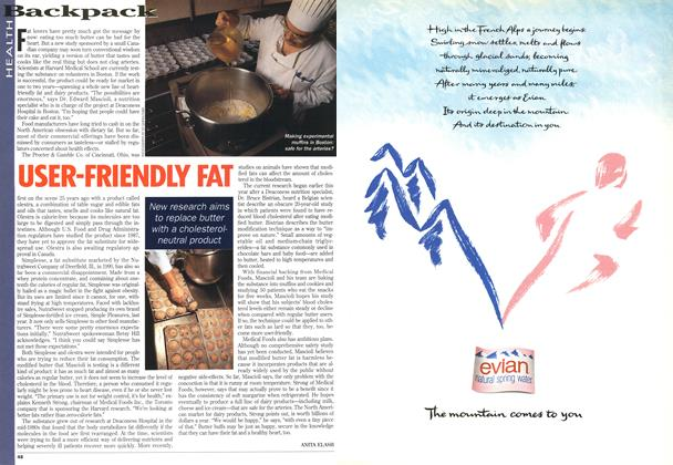 Article Preview: USER-FRIENDLY FAT, August 1995 | Maclean's