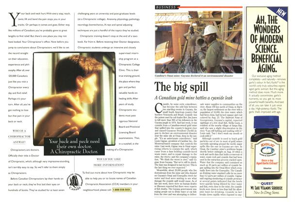 Article Preview: The big spill, September 1995 | Maclean's