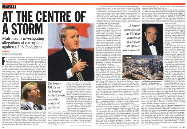 Article Preview: AT THE CENTRE OF A STORM, October 1995 | Maclean's