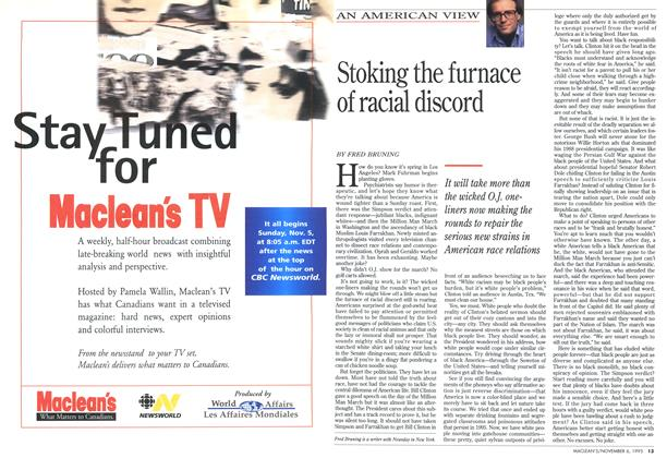 Article Preview: Stoking the furnace of racial discord, November 1995 | Maclean's