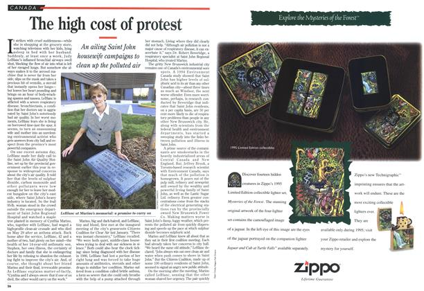 Article Preview: The high cost of protest, November 1995 | Maclean's