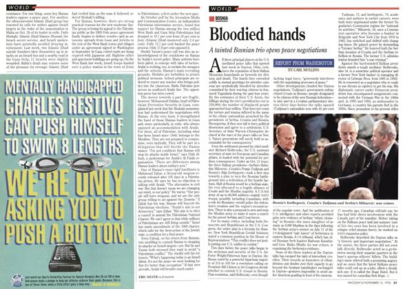Article Preview: Bloodied hands, November 1995 | Maclean's