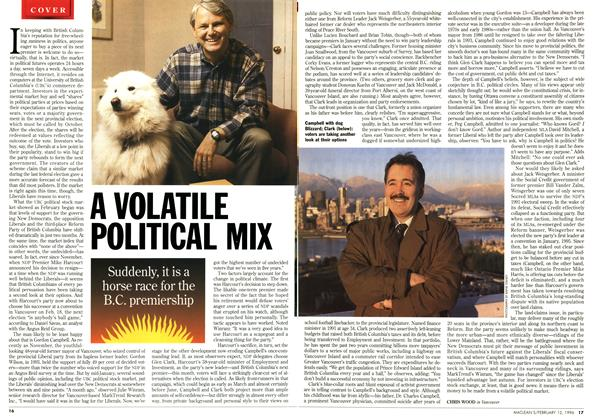Article Preview: A VOLATILE POLITICAL MIX, February 1996 | Maclean's