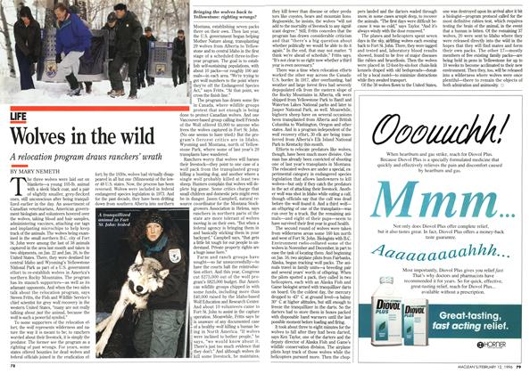 Article Preview: Wolves in the wild, February 1996 | Maclean's