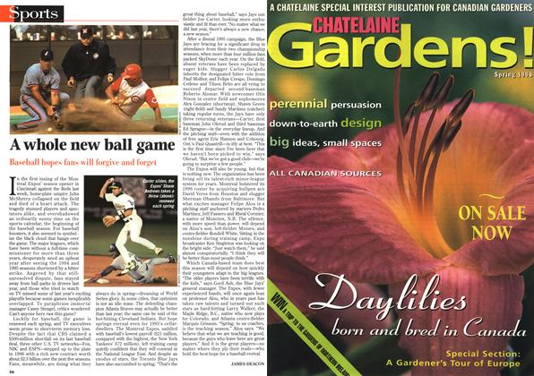 Article Preview: A whole new ball game, April 1996 | Maclean's
