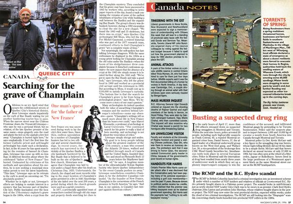 Article Preview: Searching for the grave of Champlain, April 1996 | Maclean's