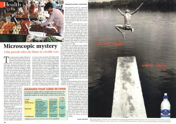 Article Preview: Microscopic mystery, July 1996 | Maclean's