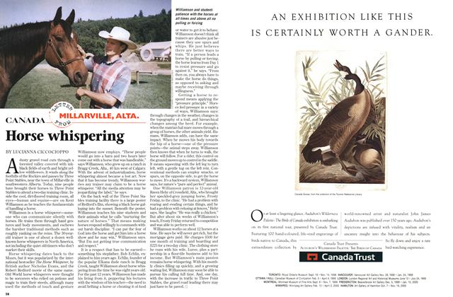 Article Preview: Horse whispering, September 1998 | Maclean's