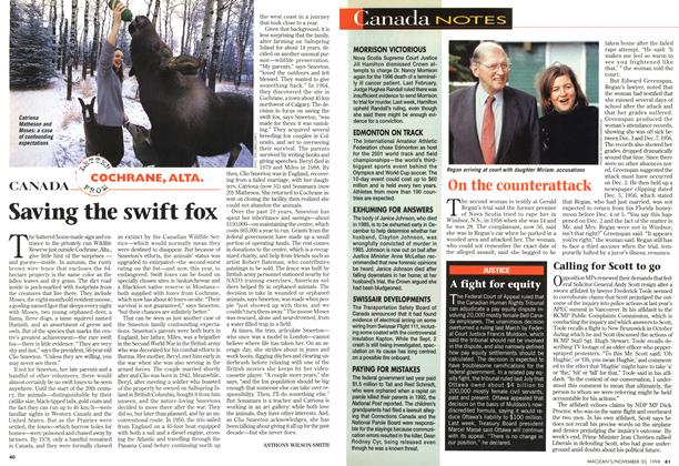 Article Preview: Saving the swift fox, November 1998 | Maclean's