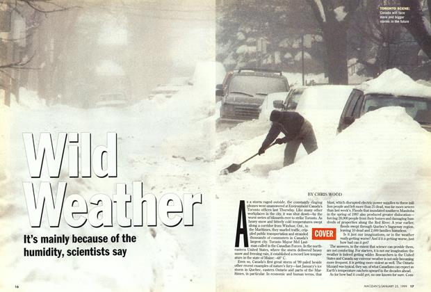 Article Preview: Wild Weather, January 1999 | Maclean's
