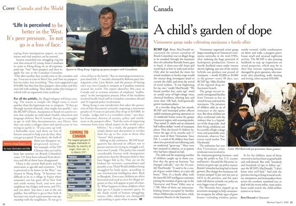 Article Preview: A child's garden of dope, April 3,2000 2000 | Maclean's