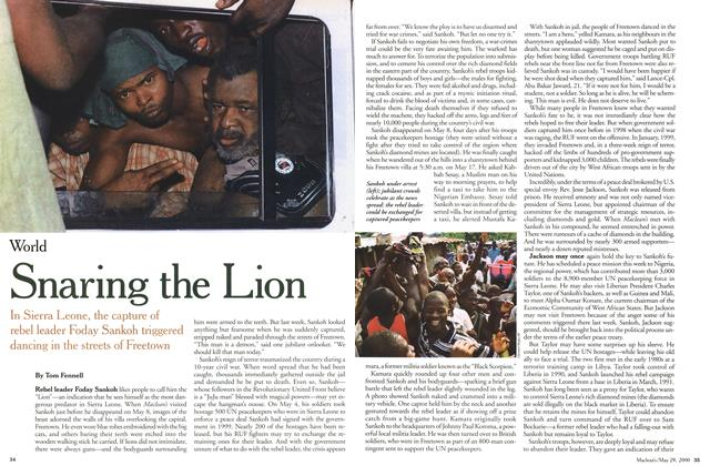 Article Preview: Snaring the Lion, May 2000 | Maclean's