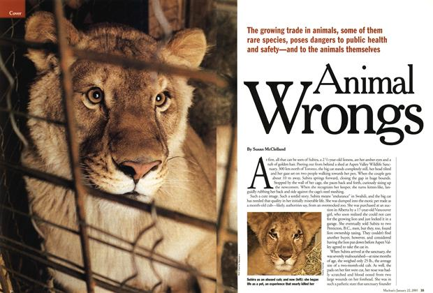 Article Preview: Animal Wrongs, January 2001 | Maclean's