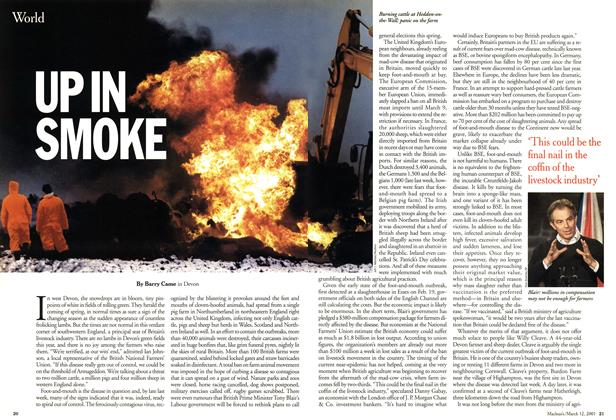 Article Preview: UP IN SMOKE, March 2001 | Maclean's