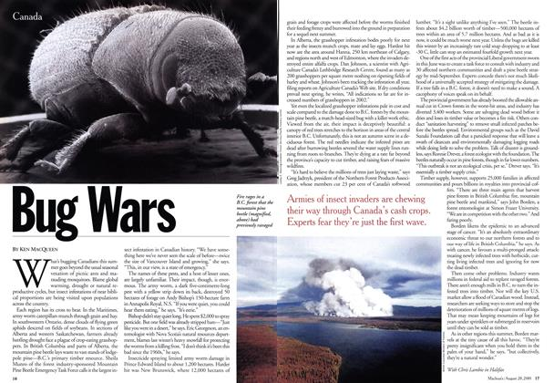Article Preview: Bug Wars, August 2001 | Maclean's