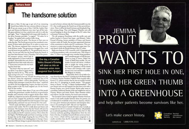 Article Preview: The handsome solution, December 2001 | Maclean's