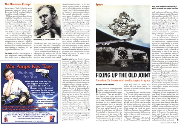 Article Preview: FIXING UP THE OLD JOINT, May 2002 | Maclean's