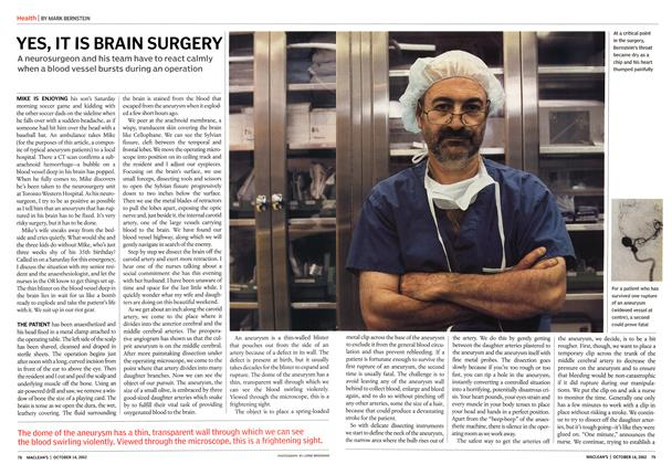 Article Preview: YES, IT IS BRAIN SURGERY, October 2002 | Maclean's
