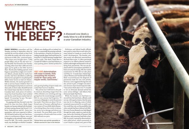 Article Preview: WHERE'S THE BEEF?, June 2003 | Maclean's