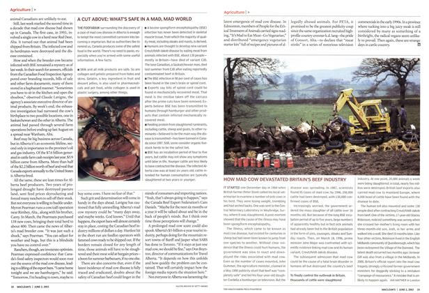 Article Preview: HOW MAD COW DEVASTATED BRITAIN'S BEEF INDUSTRY, June 2003 | Maclean's