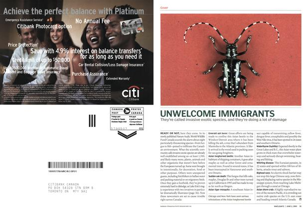Article Preview: UNWELCOME IMMIGRANTS, June 2003 | Maclean's