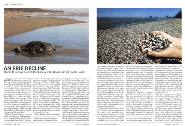 Article Preview: AN ERIE DECLINE, June 2003 | Maclean's