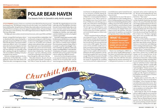 Article Preview: POLAR BEAR HAVEN, December 2003 | Maclean's