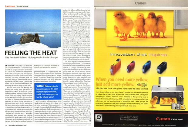 Article Preview: FEELING THE HEAT, November 2004 | Maclean's