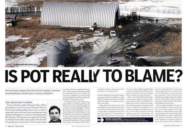 Article Preview: IS POT REALLY TO BLAME?, March 14th 2005 | Maclean's