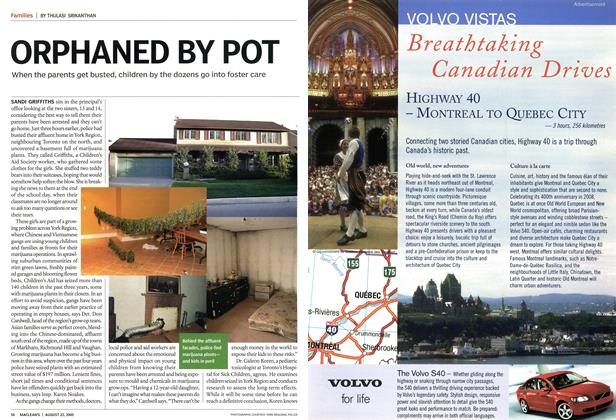 Article Preview: ORPHANED BY POT, August 2005 | Maclean's