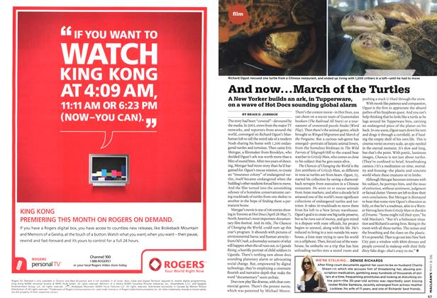 Article Preview: And now... March of the Turtles, MAY 8th 2006 2006 | Maclean's