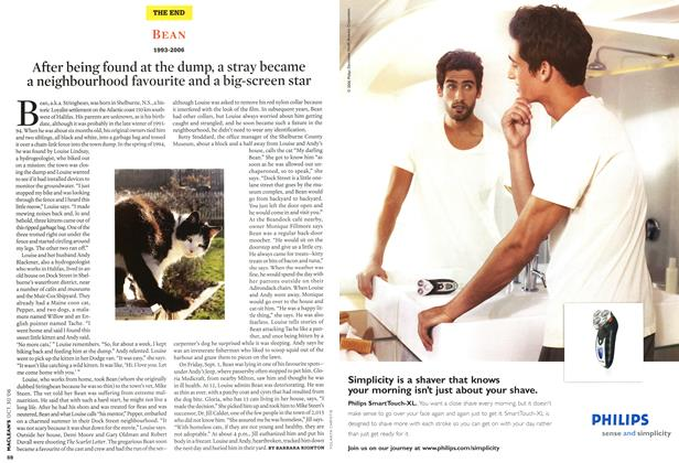 Article Preview: After being found at the dump, a stray became a neighbourhood favourite and a big-screen star, OCT. 30th 2006 2006 | Maclean's