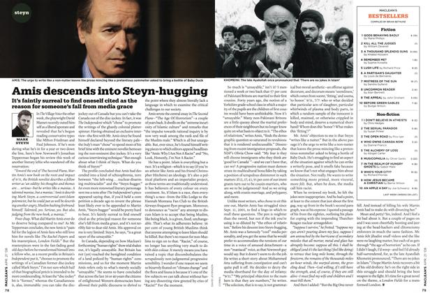 Article Preview: Amis descends into Steyn-hugging, APR. 21st 2008 2008 | Maclean's