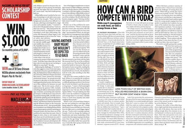 Article Preview: HOW CAN A BIRD COMPETE WITH YODA?, AUG. 4th 2008 2008 | Maclean's