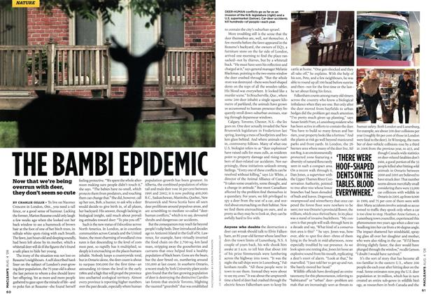 Article Preview: THE BAMBI EPIDEMIC, AUG. 4th 2008 2008 | Maclean's