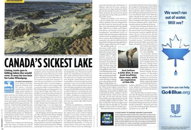 Article Preview: CANADA'S SICKEST LAKE, AUG. 24th 2009 2009 | Maclean's