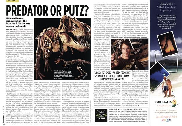 Article Preview: PREDATOR OR PUTZ?, NOV. 16th 2009 2009   Maclean's