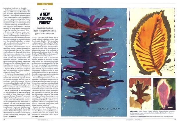 Article Preview: ANEW NATIONAL FOREST, NOVEMBER 15th 2010 | Maclean's