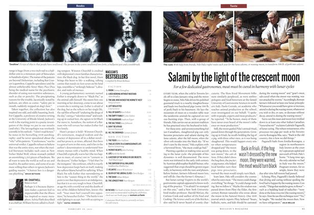 Article Preview: Salami by the light of the crescent moon, February 2011 | Maclean's