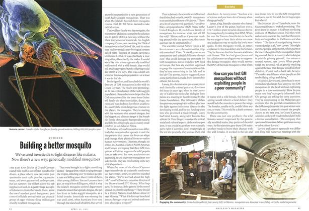 Article Preview: Building a better mosquito, April 2011 | Maclean's