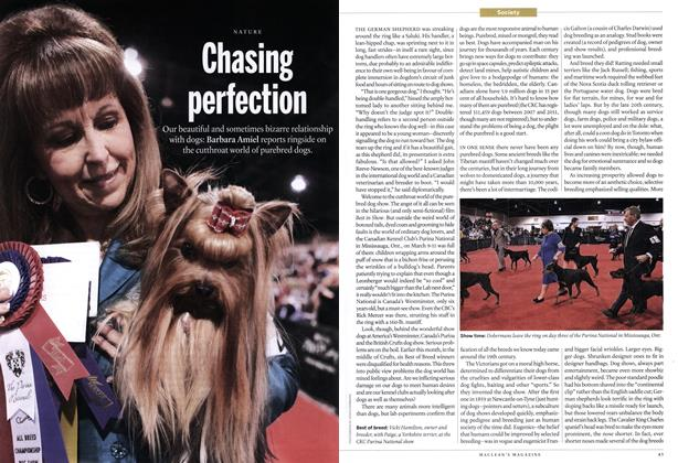 Article Preview: Chasing perfection, April 2012 | Maclean's